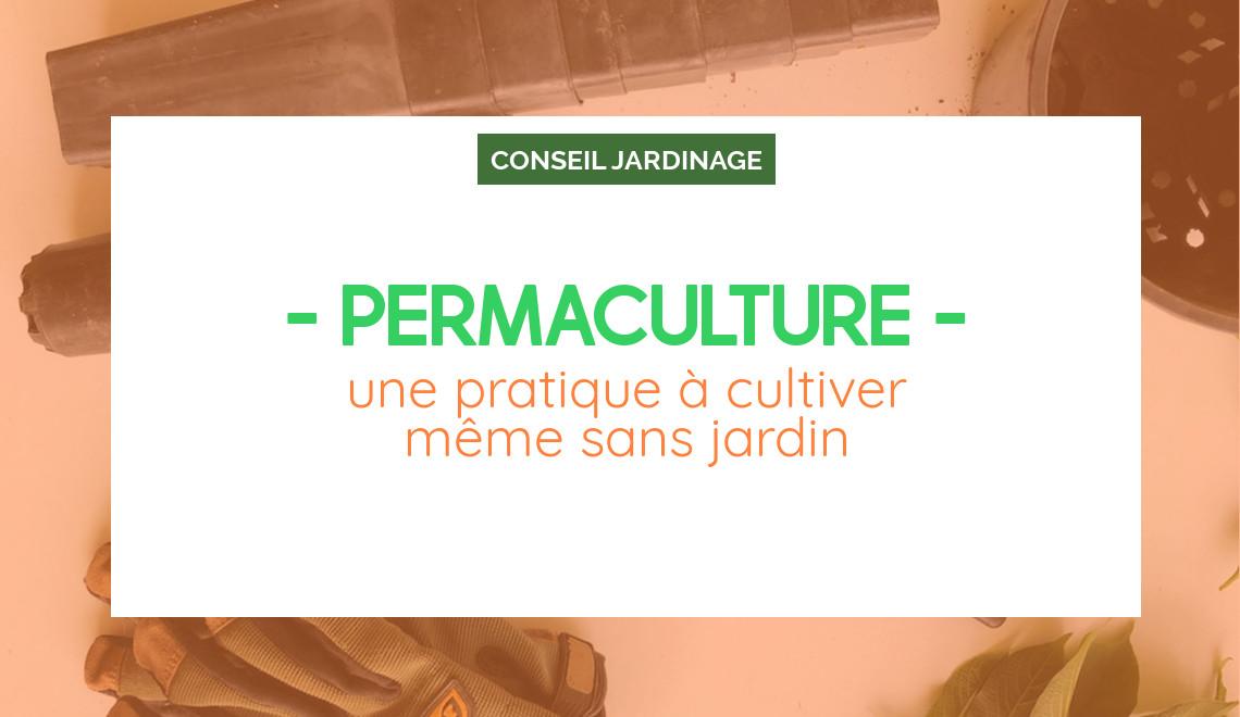 La permaculture, une pratique à cultiver même sans jardin, interview de ferdinand responsable d'Ecosia France
