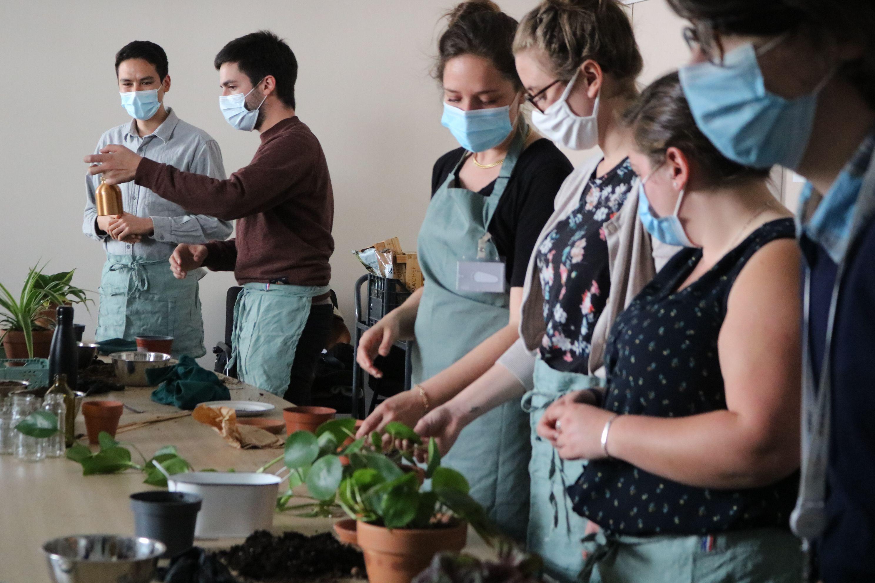 Atelier plantes d'intérieur au bureau